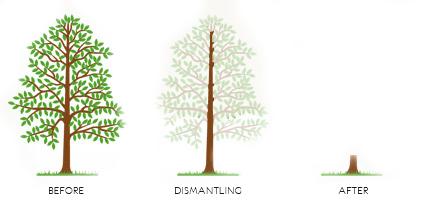 Distmantling