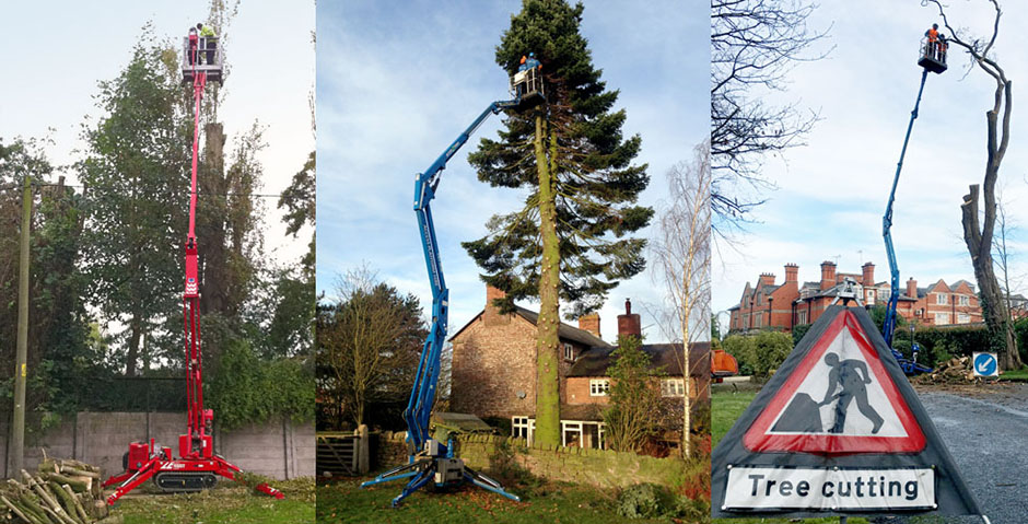 access2trees-aerial-platform-tree-surgery1_940x479