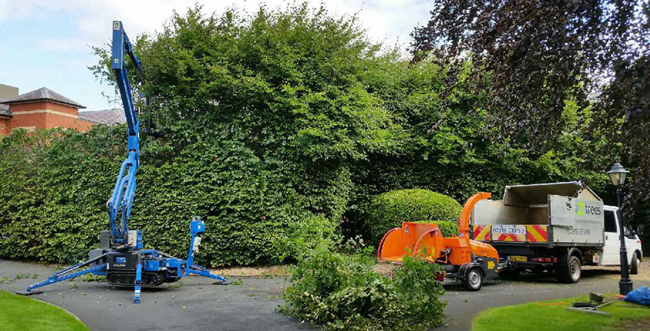 access2trees-hedge-trimming2_940x479