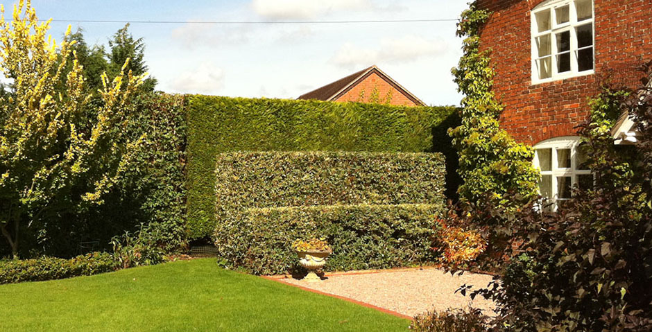 access2trees-hedge-trimming3_940x479